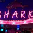 Shark Bar Bangkok
